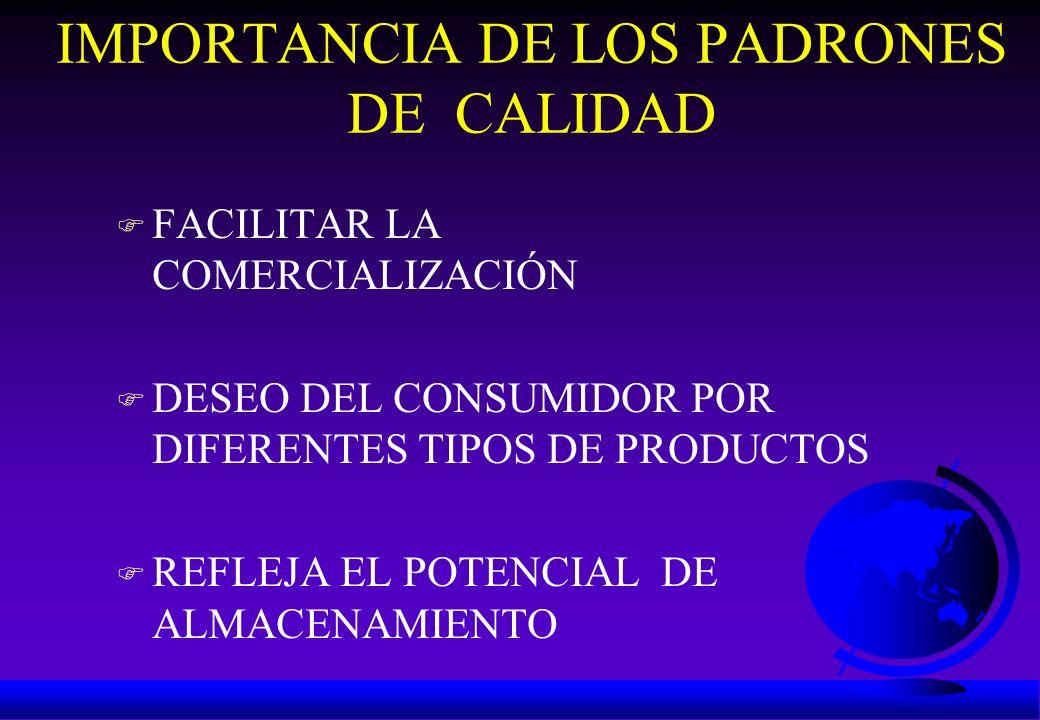 IMPORTANCIA DE LOS PADRONES DE CALIDAD