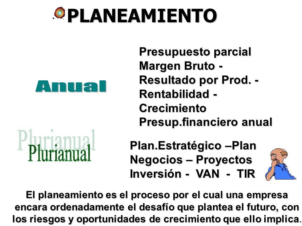PLANEAMIENTO Anual Plurianual