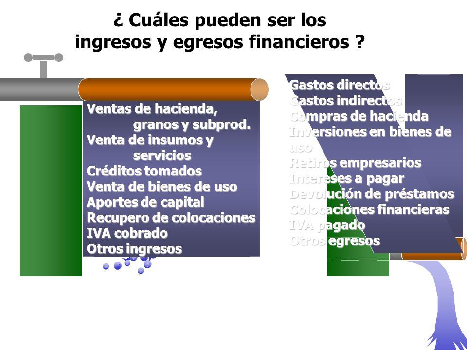 ingresos y egresos financieros