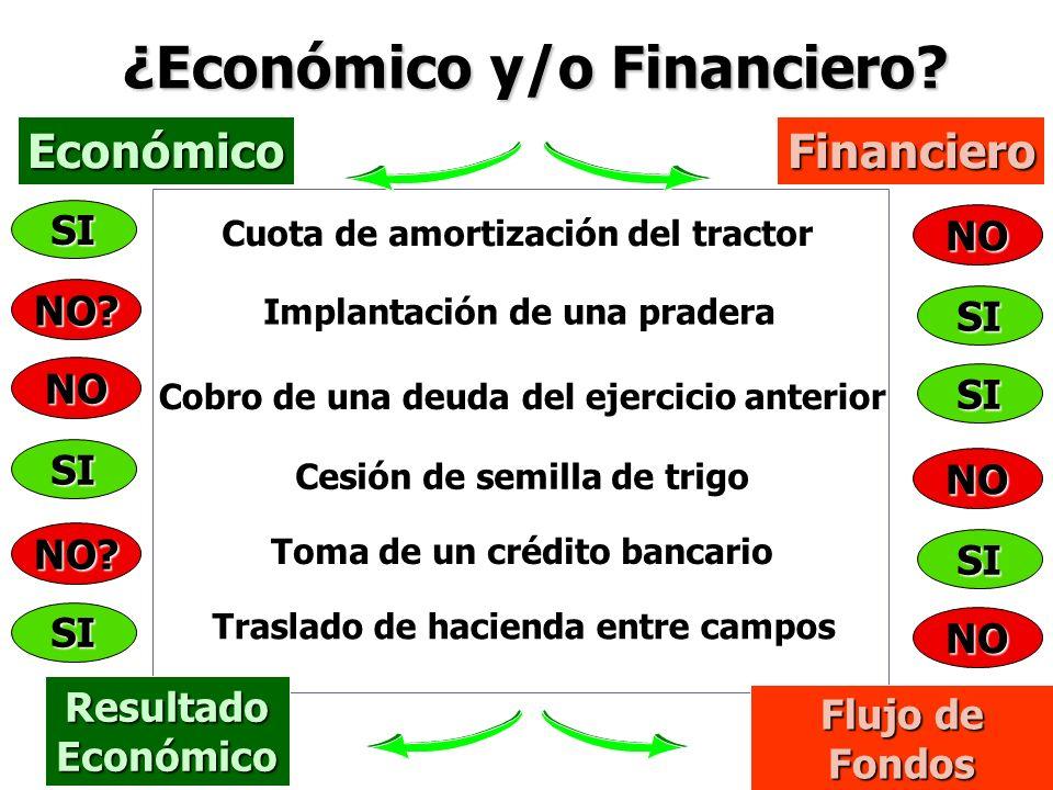 ¿Económico y/o Financiero