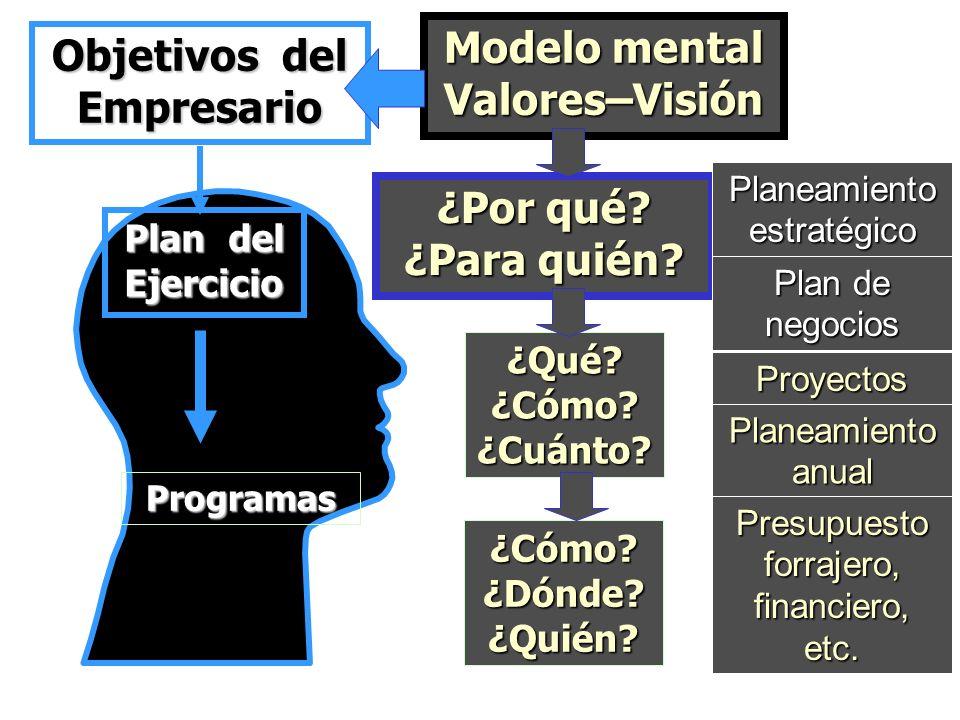 Modelo mental Valores–Visión