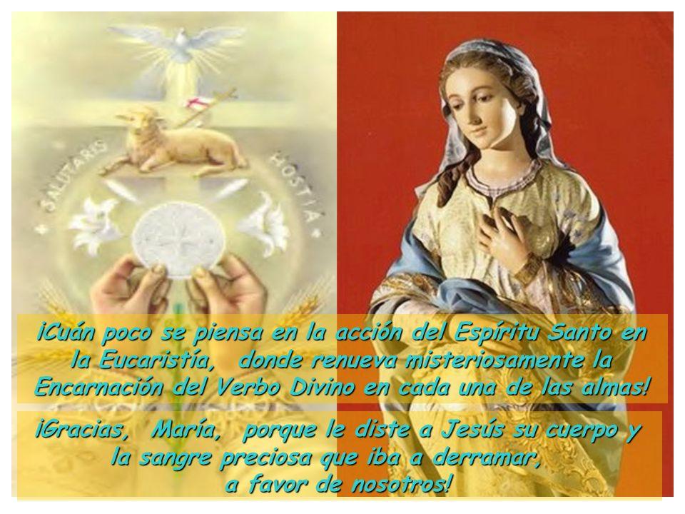 ¡Cuán poco se piensa en la acción del Espíritu Santo en la Eucaristía, donde renueva misteriosamente la Encarnación del Verbo Divino en cada una de las almas!