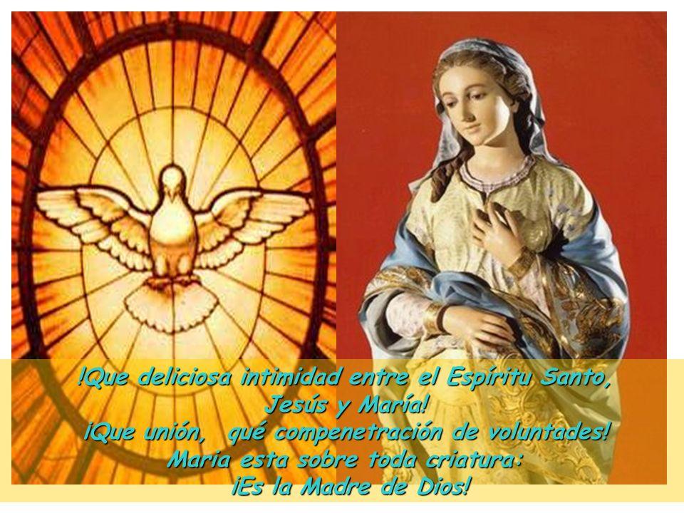 !Que deliciosa intimidad entre el Espíritu Santo, Jesús y María!