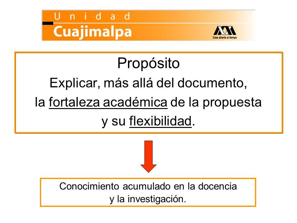 Propósito Explicar, más allá del documento,