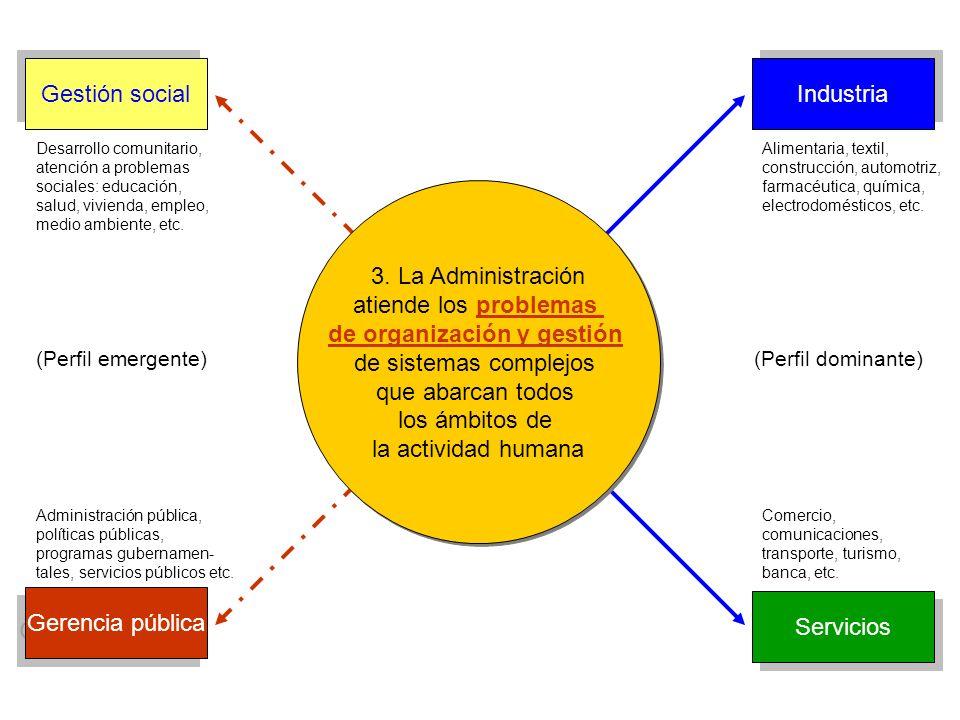 atiende los problemas de organización y gestión