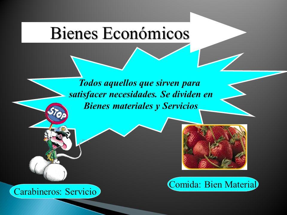 Bienes Económicos Todos aquellos que sirven para