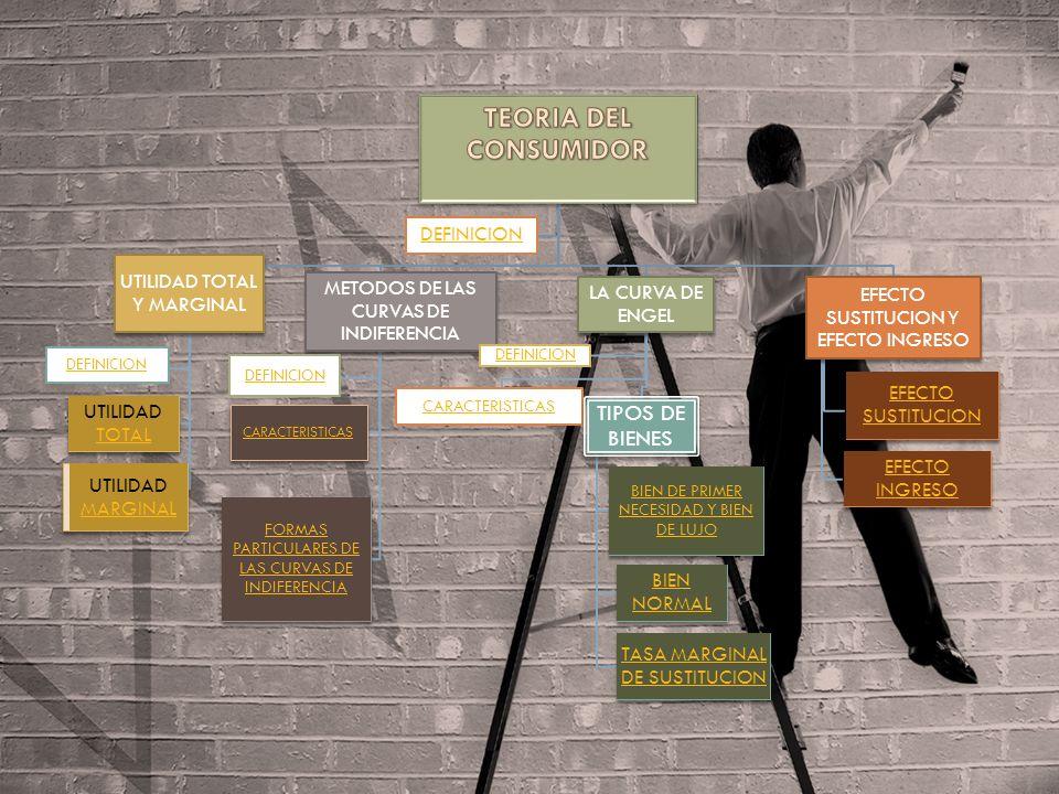 TEORIA DEL CONSUMIDOR TIPOS DE BIENES DEFINICION