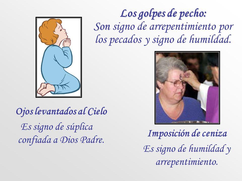 Los golpes de pecho: Son signo de arrepentimiento por los pecados y signo de humildad.