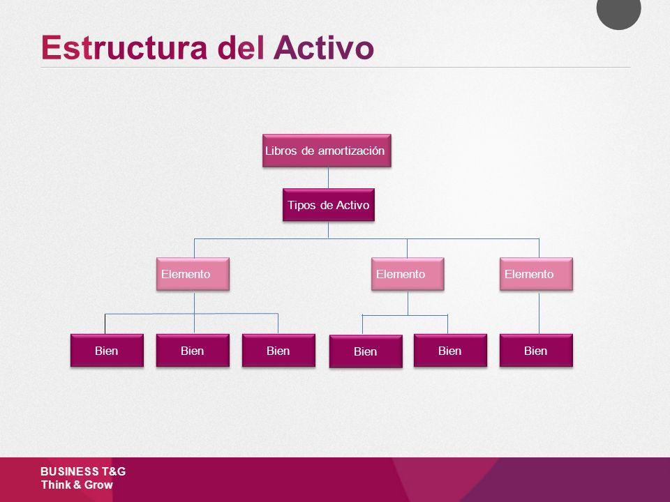 Estructura del Activo Libros de amortización Tipos de Activo Elemento