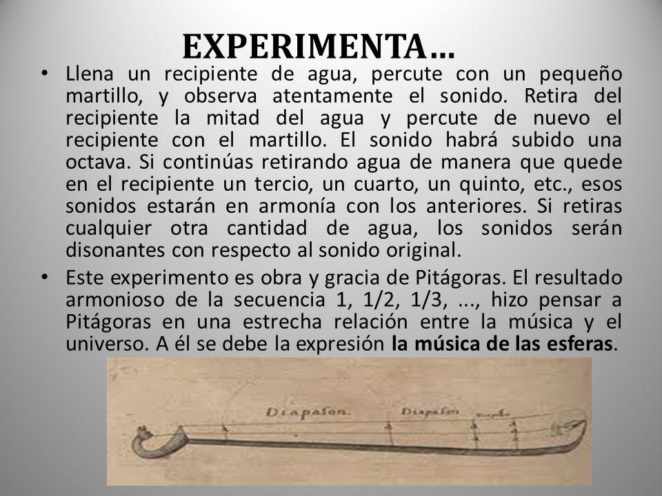 EXPERIMENTA…