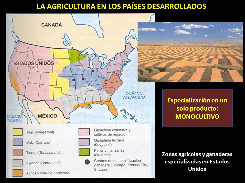 LA AGRICULTURA EN LOS PAÍSES DESARROLLADOS