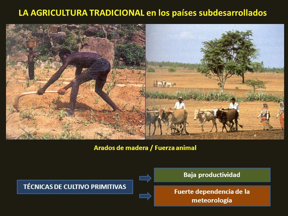 LA AGRICULTURA TRADICIONAL en los países subdesarrollados