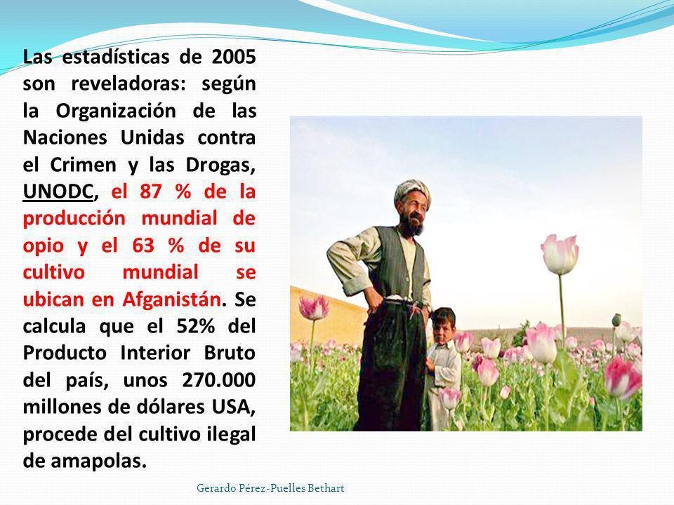 Las estadísticas de 2005 son reveladoras: según la Organización de las Naciones Unidas contra el Crimen y las Drogas, UNODC, el 87 % de la producción mundial de opio y el 63 % de su cultivo mundial se ubican en Afganistán. Se calcula que el 52% del Producto Interior Bruto del país, unos 270.000 millones de dólares USA, procede del cultivo ilegal de amapolas.