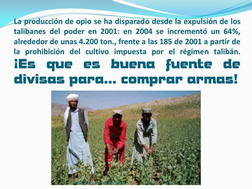 La producción de opio se ha disparado desde la expulsión de los talibanes del poder en 2001: en 2004 se incrementó un 64%, alrededor de unas 4.200 ton., frente a las 185 de 2001 a partir de la prohibición del cultivo impuesta por el régimen talibán. ¡Es que es buena fuente de divisas para… comprar armas!