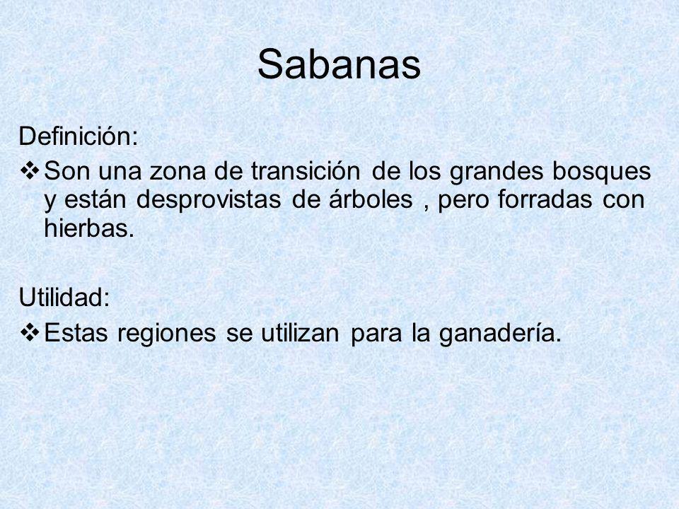 Sabanas Definición: Son una zona de transición de los grandes bosques y están desprovistas de árboles , pero forradas con hierbas.