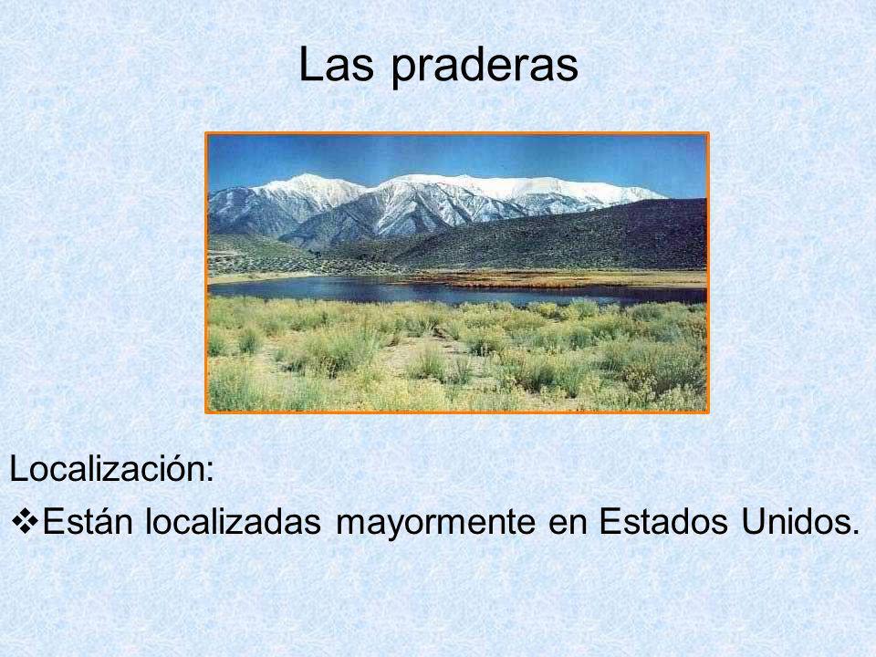 Las praderas Localización: