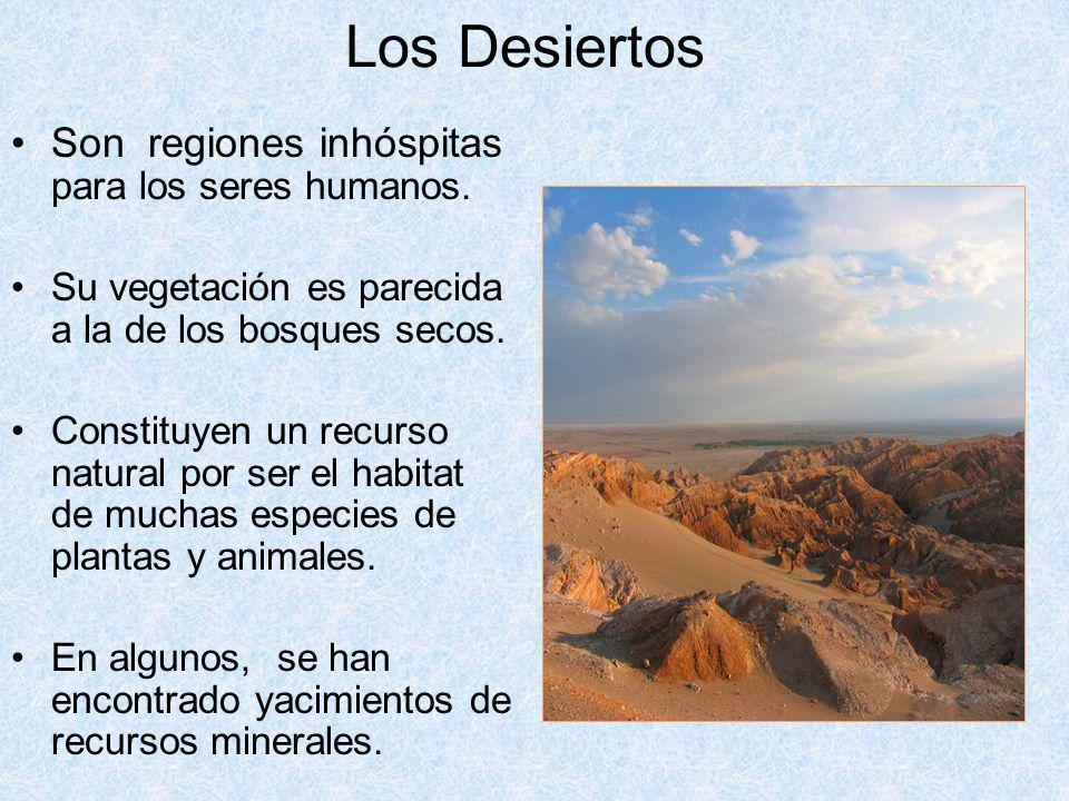 Los Desiertos Son regiones inhóspitas para los seres humanos.