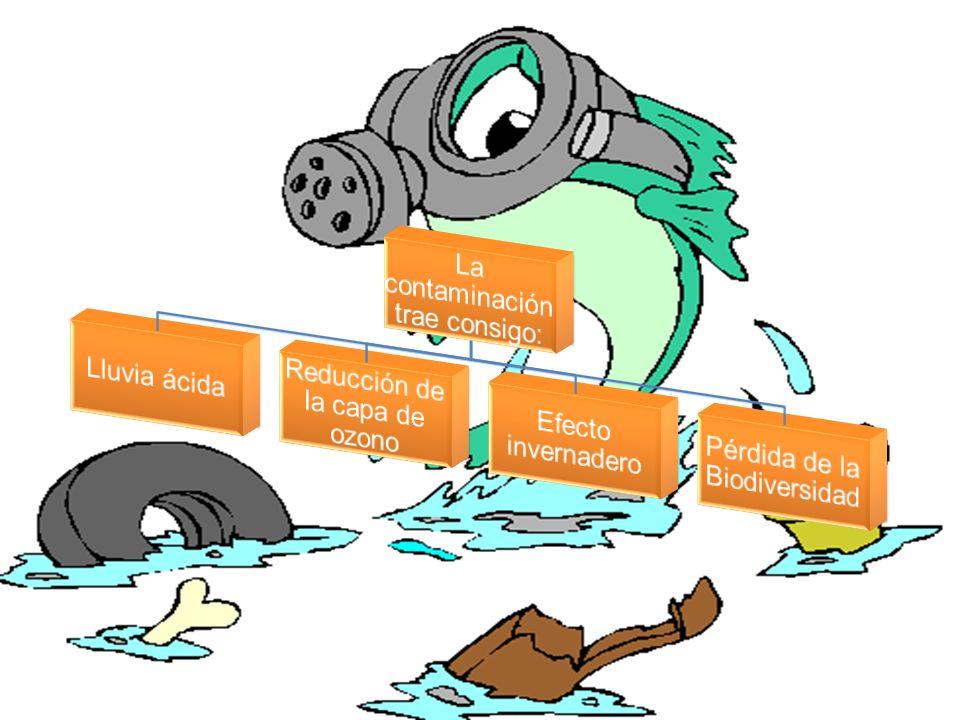 La contaminación trae consigo:
