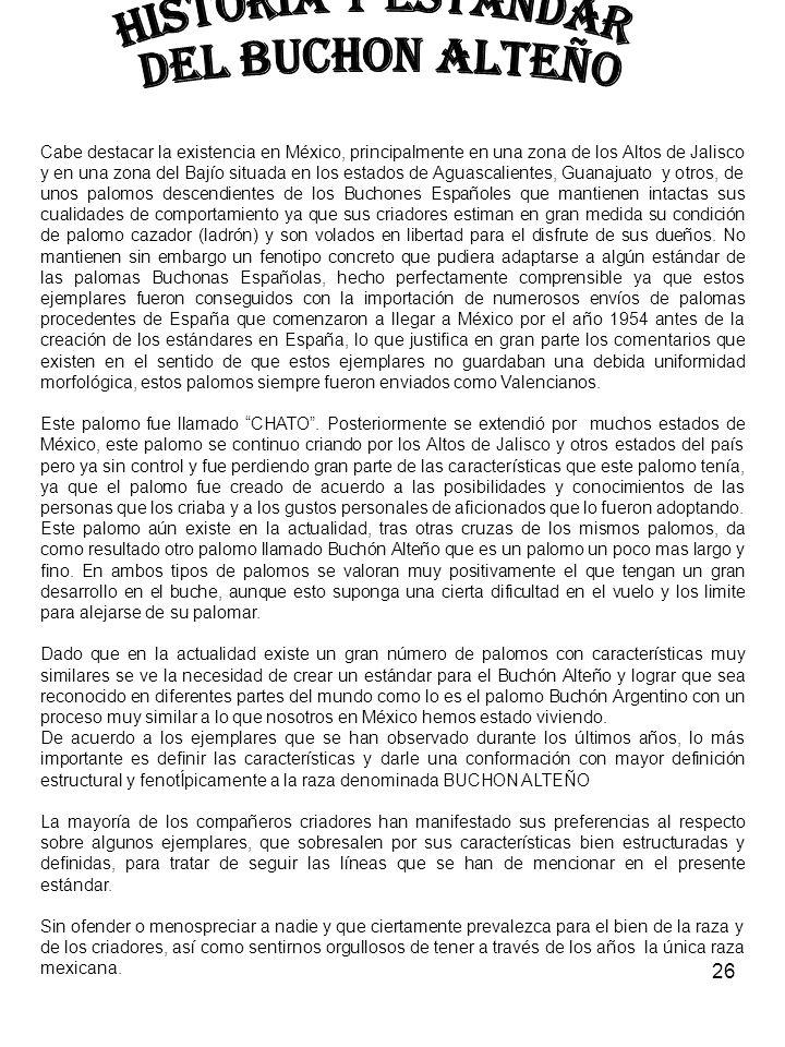 HISTORIA Y ESTANDAR DEL BUCHON ALTEÑO
