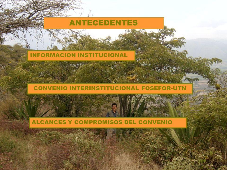 CONVENIO INTERINSTITUCIONAL FOSEFOR-UTN