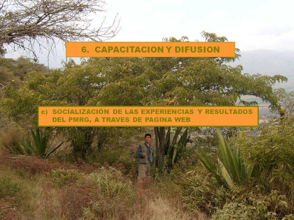 6. CAPACITACION Y DIFUSION