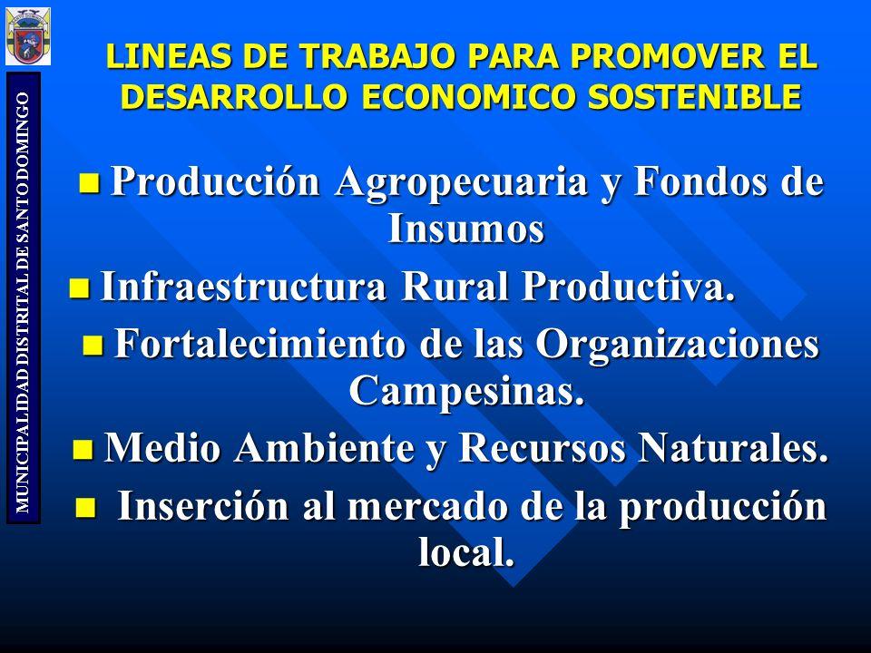 LINEAS DE TRABAJO PARA PROMOVER EL DESARROLLO ECONOMICO SOSTENIBLE