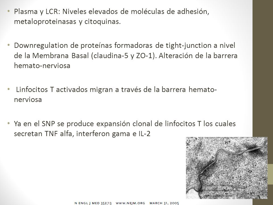 Plasma y LCR: Niveles elevados de moléculas de adhesión, metaloproteinasas y citoquinas.