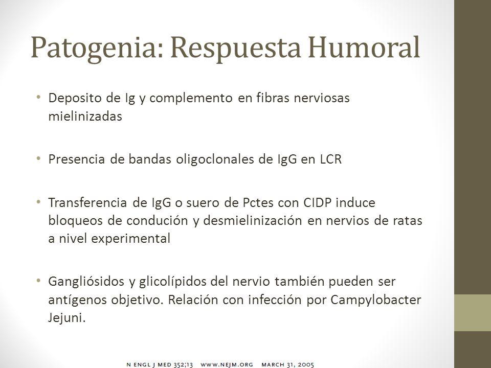 Patogenia: Respuesta Humoral