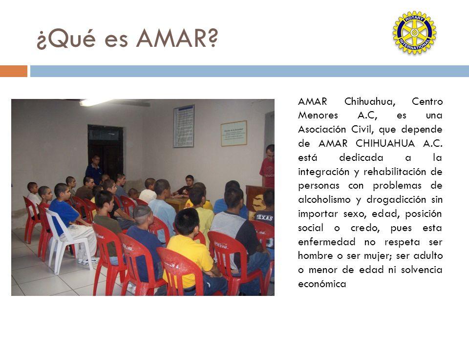 ¿Qué es AMAR