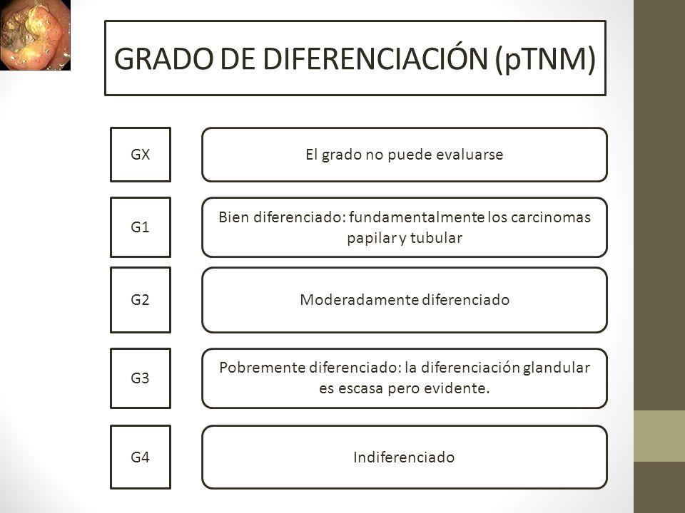 GRADO DE DIFERENCIACIÓN (pTNM)