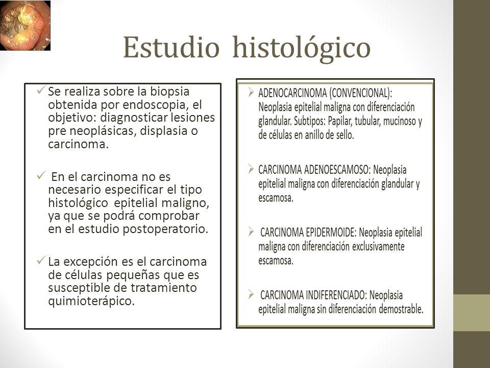 Estudio histológico Se realiza sobre la biopsia obtenida por endoscopia, el objetivo: diagnosticar lesiones pre neoplásicas, displasia o carcinoma.