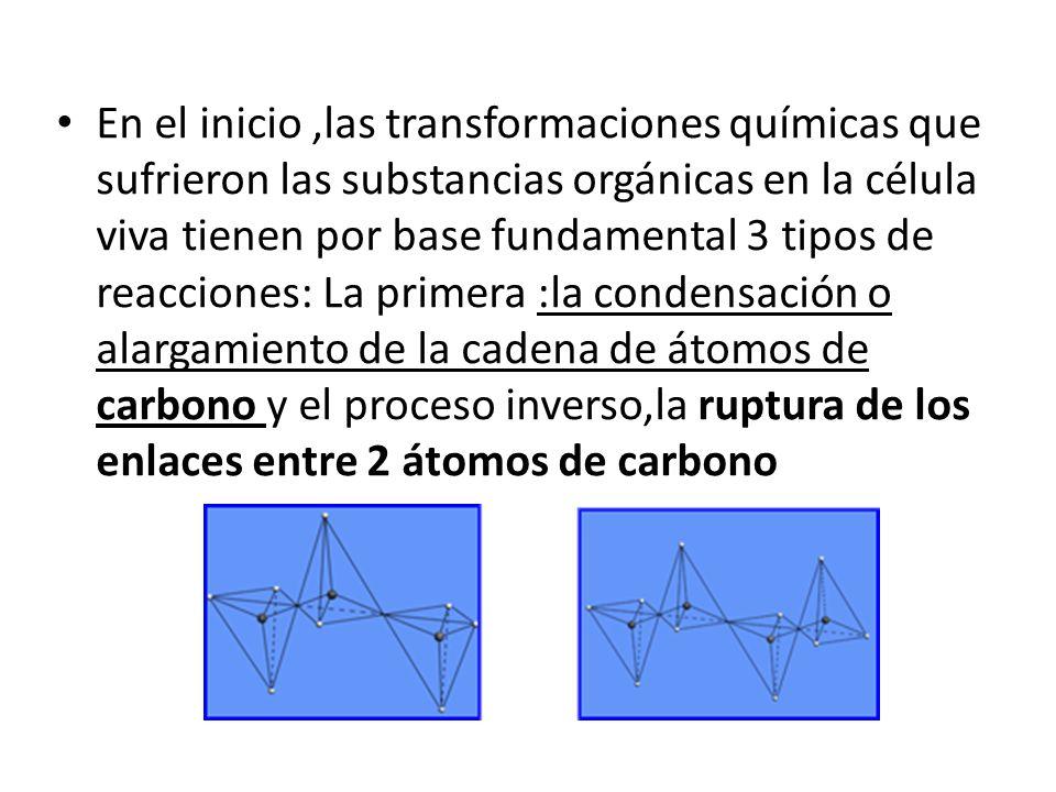 En el inicio ,las transformaciones químicas que sufrieron las substancias orgánicas en la célula viva tienen por base fundamental 3 tipos de reacciones: La primera :la condensación o alargamiento de la cadena de átomos de carbono y el proceso inverso,la ruptura de los enlaces entre 2 átomos de carbono