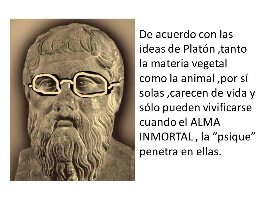 De acuerdo con las ideas de Platón ,tanto la materia vegetal como la animal ,por sí solas ,carecen de vida y sólo pueden vivificarse cuando el ALMA INMORTAL , la psique penetra en ellas.