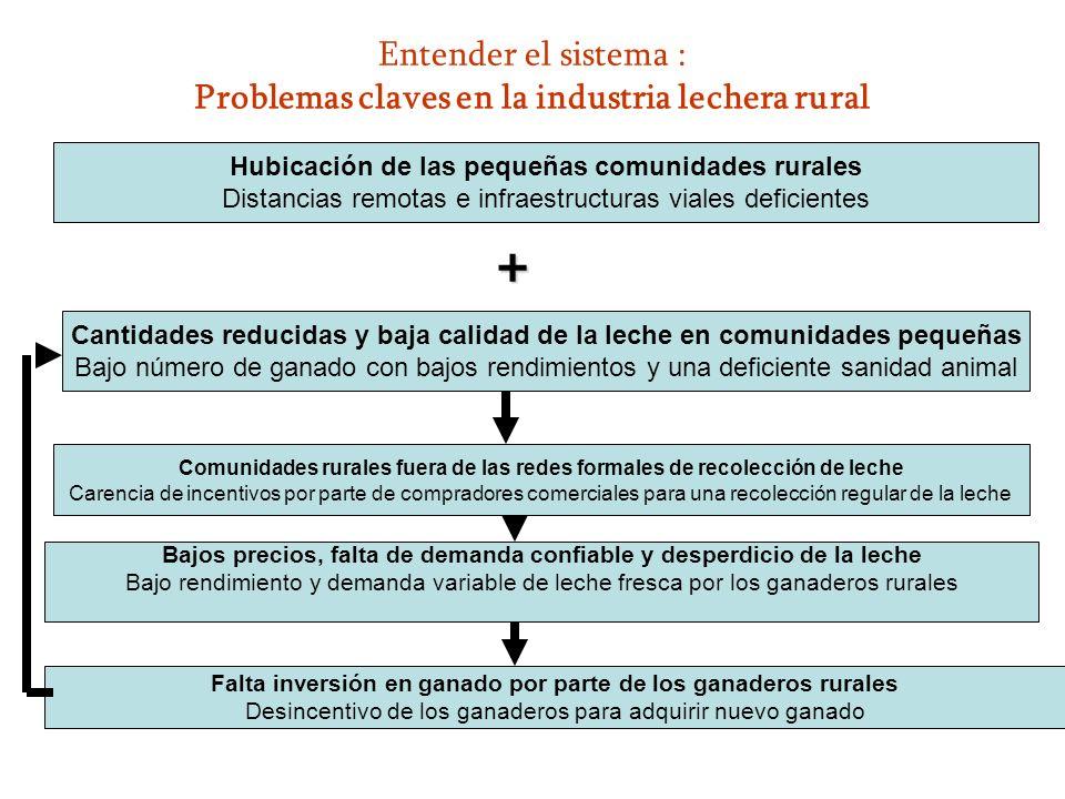 Entender el sistema : Problemas claves en la industria lechera rural