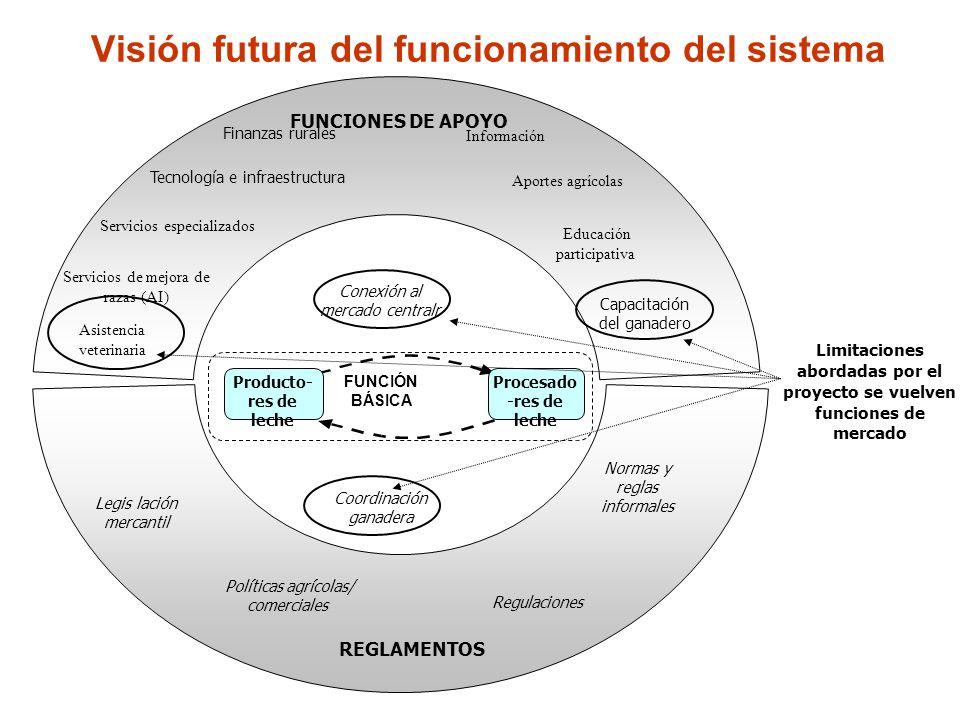 Visión futura del funcionamiento del sistema