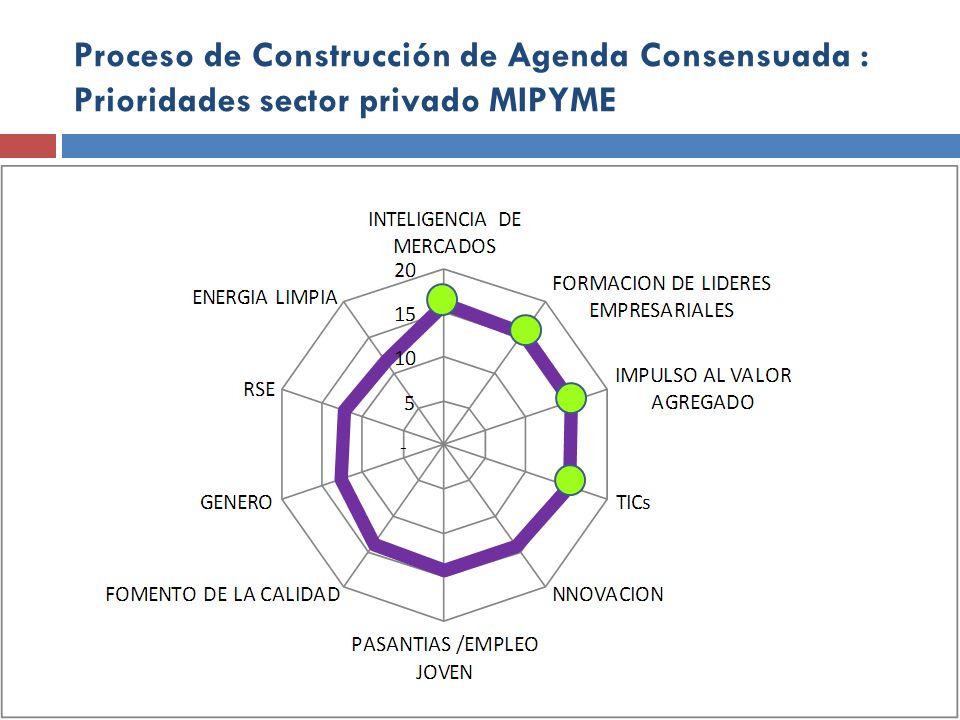 Proceso de Construcción de Agenda Consensuada : Prioridades sector privado MIPYME