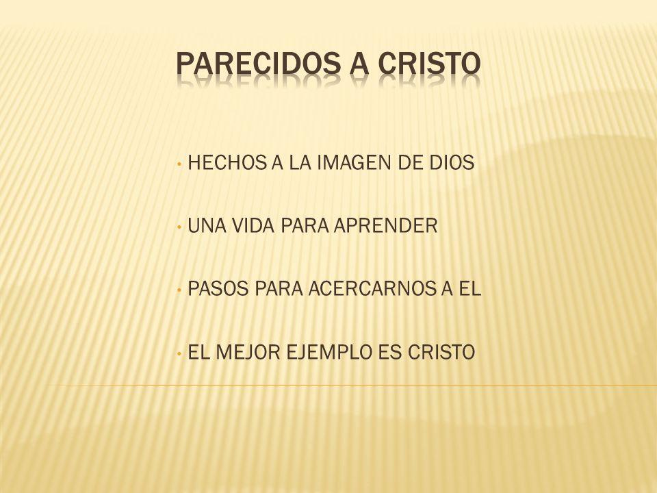 PARECIDOS A CRISTO HECHOS A LA IMAGEN DE DIOS UNA VIDA PARA APRENDER