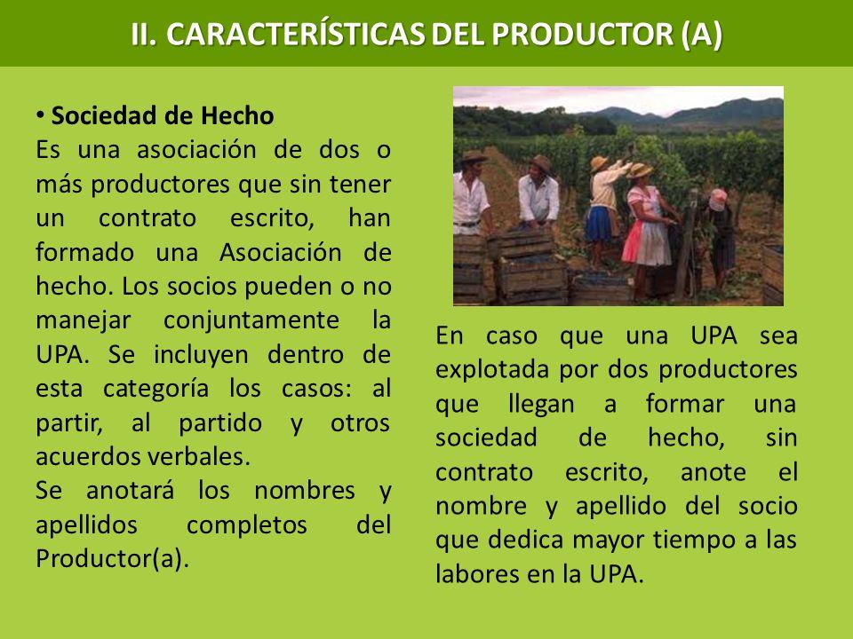 II. CARACTERÍSTICAS DEL PRODUCTOR (A)
