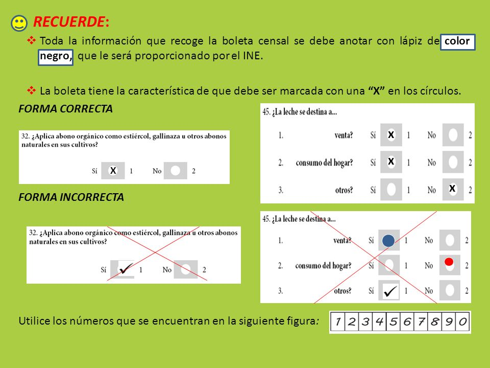 RECUERDE:Toda la información que recoge la boleta censal se debe anotar con lápiz de color negro, que le será proporcionado por el INE.