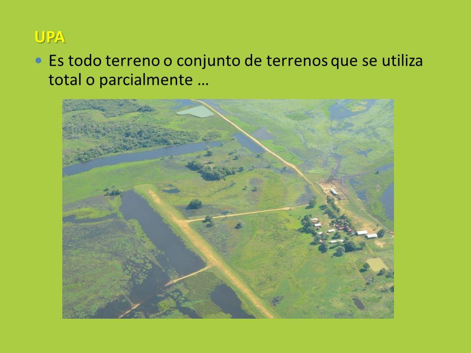 UPA Es todo terreno o conjunto de terrenos que se utiliza total o parcialmente …