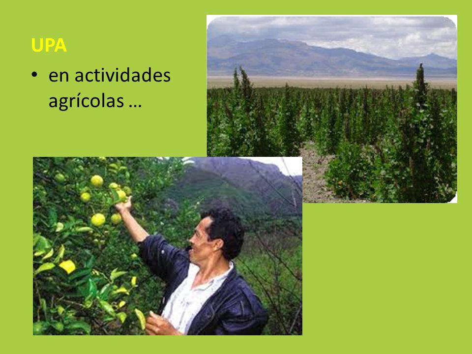 UPA en actividades agrícolas …