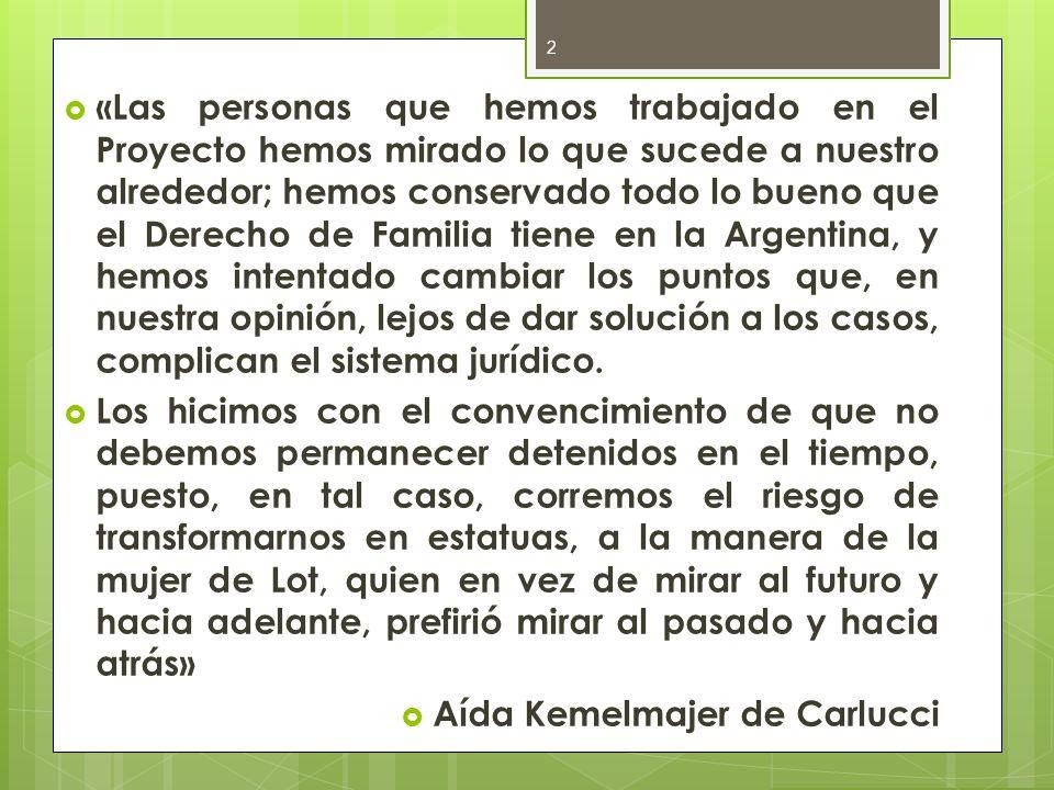 «Las personas que hemos trabajado en el Proyecto hemos mirado lo que sucede a nuestro alrededor; hemos conservado todo lo bueno que el Derecho de Familia tiene en la Argentina, y hemos intentado cambiar los puntos que, en nuestra opinión, lejos de dar solución a los casos, complican el sistema jurídico.