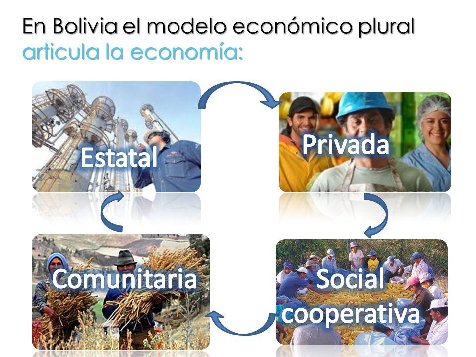 Privada Estatal Comunitaria Social cooperativa