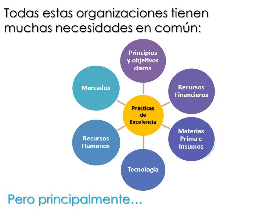 Todas estas organizaciones tienen muchas necesidades en común: