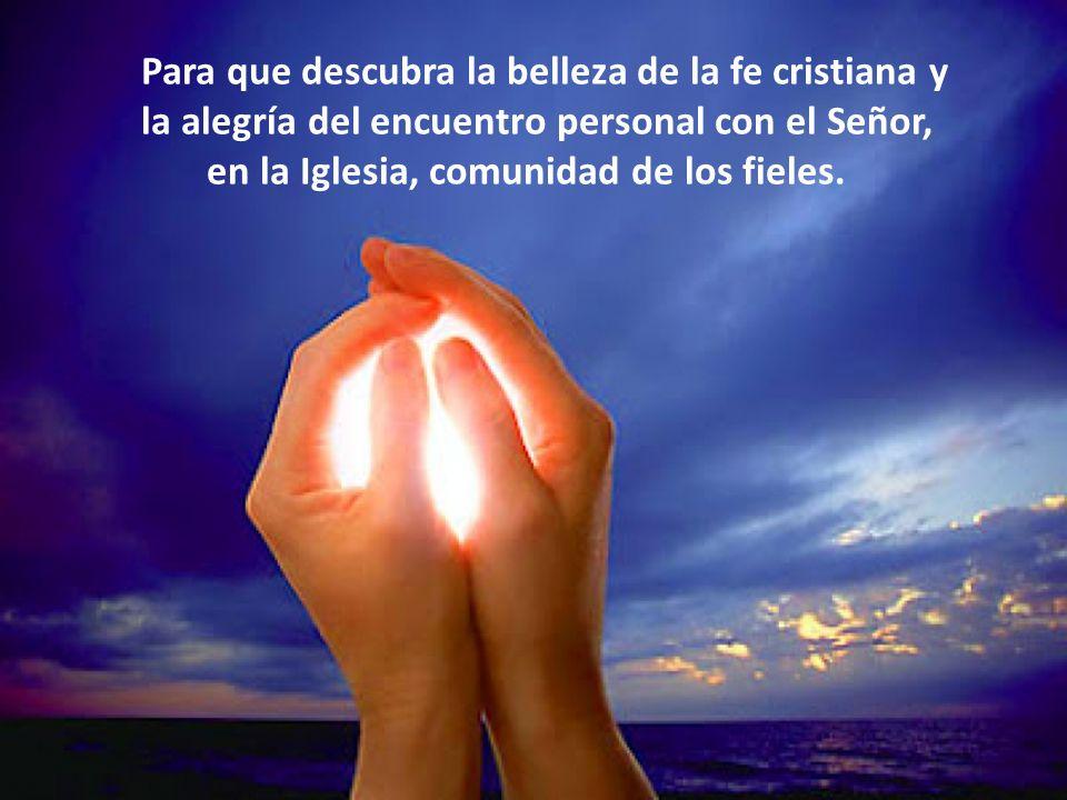 Para que descubra la belleza de la fe cristiana y la alegría del encuentro personal con el Señor,