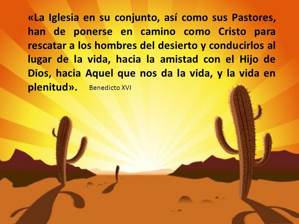 «La Iglesia en su conjunto, así como sus Pastores, han de ponerse en camino como Cristo para rescatar a los hombres del desierto y conducirlos al lugar de la vida, hacia la amistad con el Hijo de Dios, hacia Aquel que nos da la vida, y la vida en plenitud».