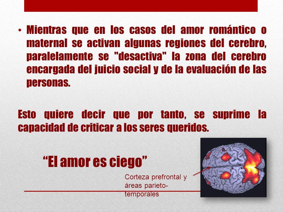 Mientras que en los casos del amor romántico o maternal se activan algunas regiones del cerebro, paralelamente se desactiva la zona del cerebro encargada del juicio social y de la evaluación de las personas.