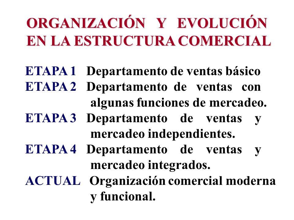 ORGANIZACIÓN Y EVOLUCIÓN EN LA ESTRUCTURA COMERCIAL
