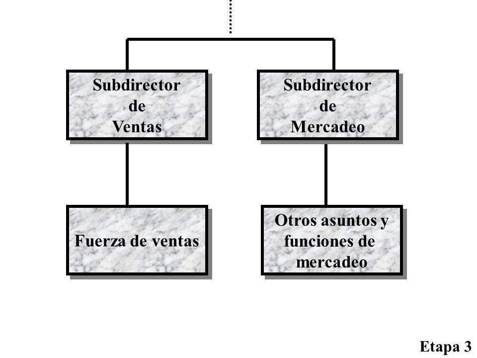 Subdirector de Ventas Subdirector de Mercadeo Fuerza de ventas