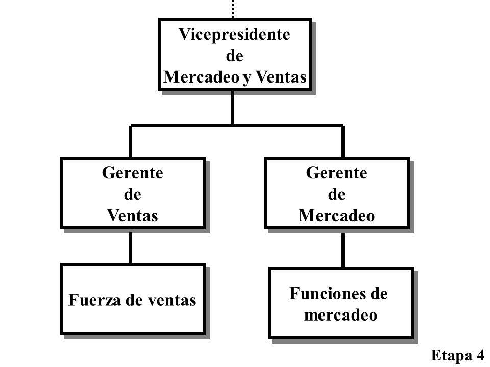 Vicepresidente de Mercadeo y Ventas Gerente de Ventas Gerente de